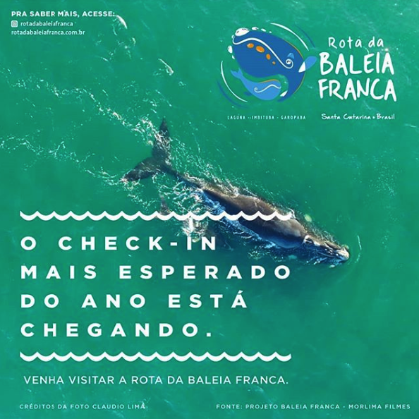 rota-da-baleia-franca-hotel-rossoma-praia-do-rosa